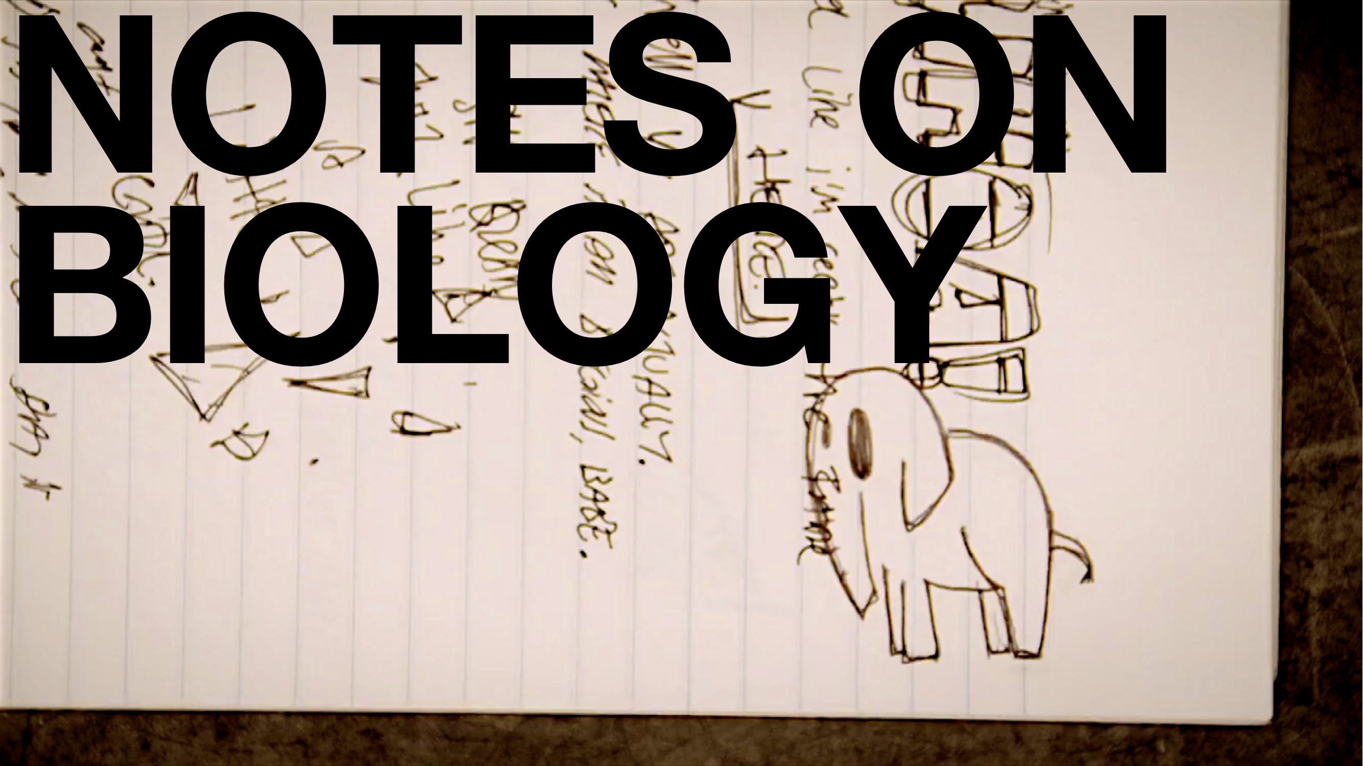 (notes on) biology