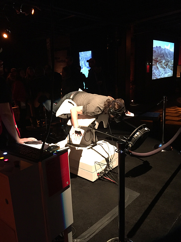 VR Birdly installation